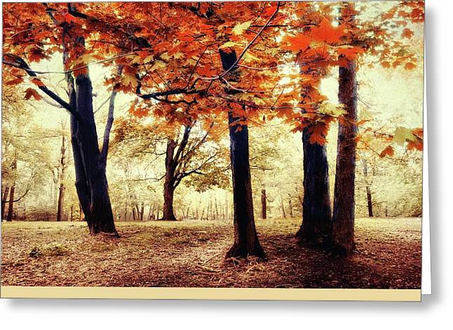 Red Maple Tree Branches Greeting Cards - Woodland Wonder Greeting Card by Jessica Jenney