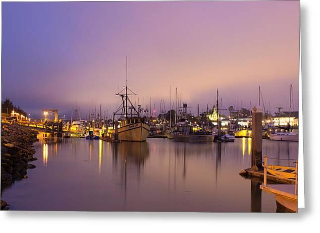 Ocean Panorama Greeting Cards - Woodley Island Marina at Night Greeting Card by Dana Crandell