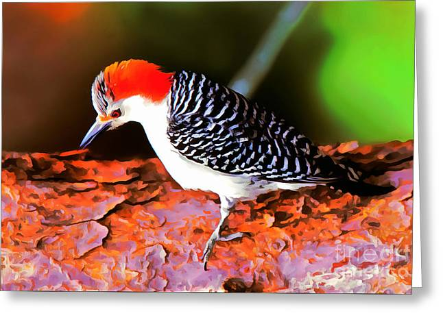 Pen And Ink Drawing Greeting Cards - Woodpecker Greeting Card by Tara Schlayer