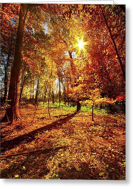 Woods Walking Greeting Card by Phil Koch
