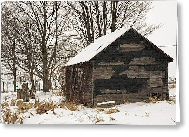 Sheds Greeting Cards - Woodshed in Winter Greeting Card by Elaine Mikkelstrup