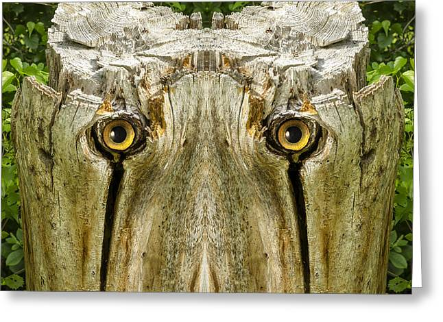 Anthropomorphic Digital Greeting Cards - Woody 156 Greeting Card by Rick Mosher