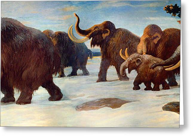 Somme Greeting Cards - Wooly Mammoths Near The Somme River Greeting Card by Charles Robert Knight