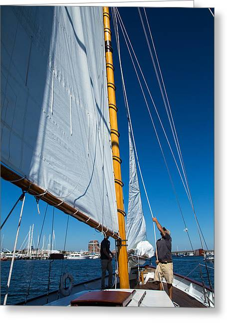Boats In Water Greeting Cards - Working The Sails Greeting Card by Karol  Livote