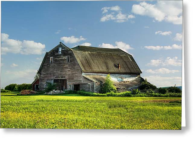 Maine Agriculture Greeting Cards - Working This Old Barn Greeting Card by Gary Smith