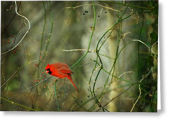 Yeats Greeting Cards - World of Fire and Dew Greeting Card by Rebecca Sherman
