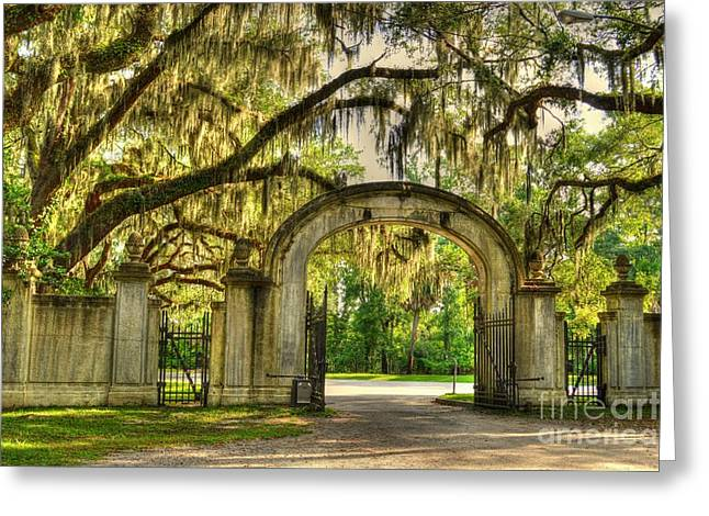 Moss Greeting Cards - Wormsloe Gate rear Greeting Card by Linda Covino