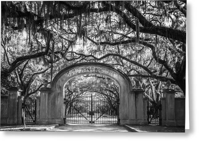 Historic Site Greeting Cards - Wormsloe Plantation BW Greeting Card by Joan Carroll