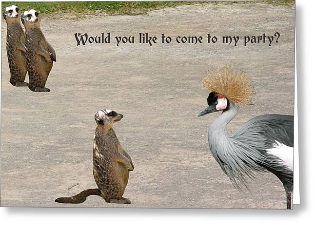 Party Invite Greeting Cards - Would you like to come to my party Greeting Card by Fun Cards