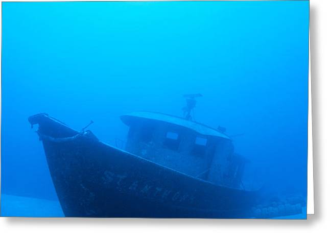 Wreck Of The St. Anthony Greeting Card by Dave Fleetham - Printscapes