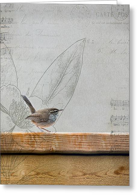 Wren Greeting Cards - Wren 2 Greeting Card by Rebecca Cozart