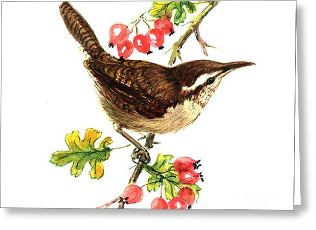 Wren And Rosehips Greeting Card by Nell Hill
