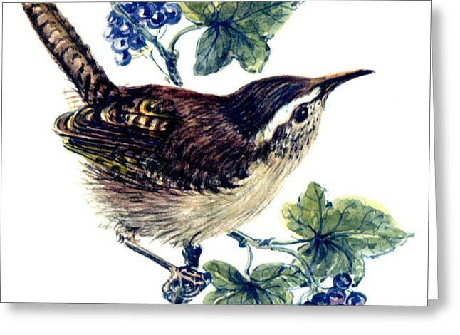 Wren In The Ivy Greeting Card by Nell Hill