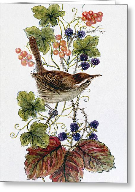 Wren On A Spray Of Berries Greeting Card by Nell Hill