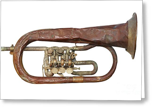 Wrinkled Old Trumpet Greeting Card by Michal Boubin