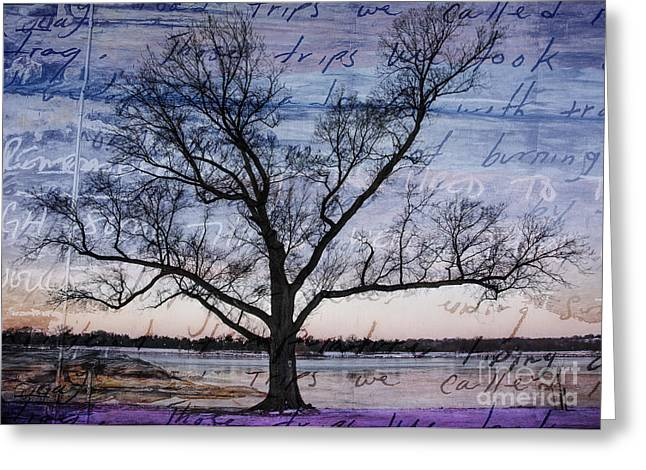 Blended Images Greeting Cards - Written on the Wind Greeting Card by Terry Rowe