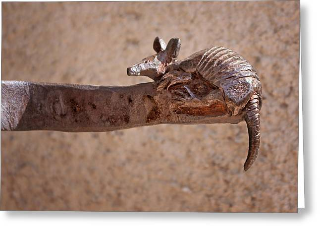 Up-armored Greeting Cards - Wrought Iron - Armadillo Greeting Card by Nikolyn McDonald