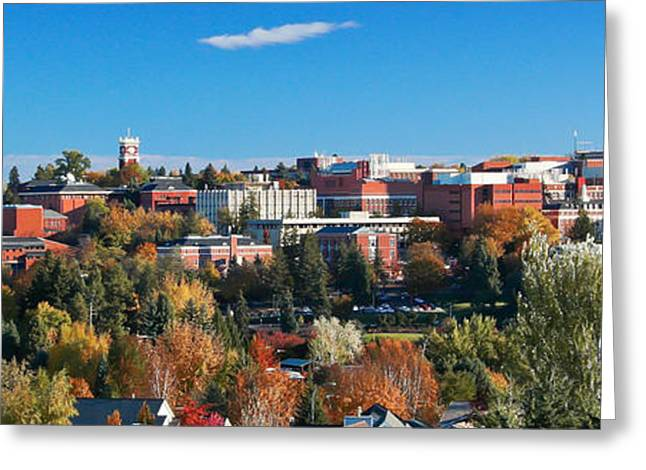 Fall Scenes Greeting Cards - WSU Autumn Panorama Greeting Card by David Patterson