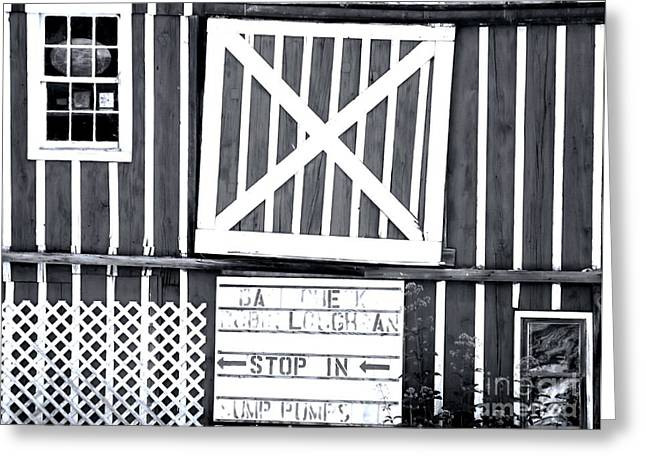 Barn Yard Greeting Cards - X Marks The Spot Greeting Card by Robyn King