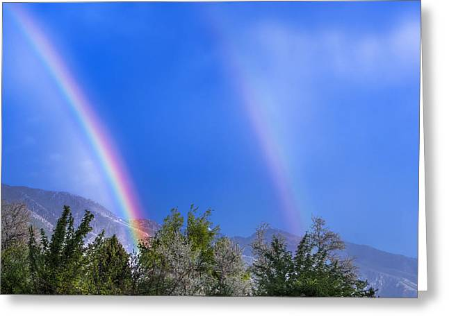 Double Rainbow Digital Art Greeting Cards - X2 Greeting Card by Greg Collins