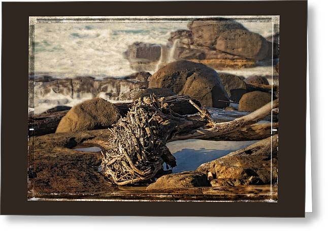 Ocean Art. Beach Decor Greeting Cards - Yachats Roots Greeting Card by Thom Zehrfeld