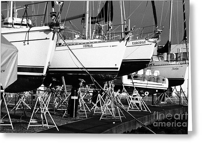 Azoren Greeting Cards - Yachts on drydock Greeting Card by Gaspar Avila