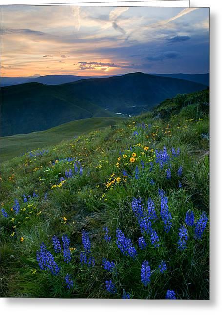 Yakima River Canyon Sunset Greeting Card by Mike  Dawson