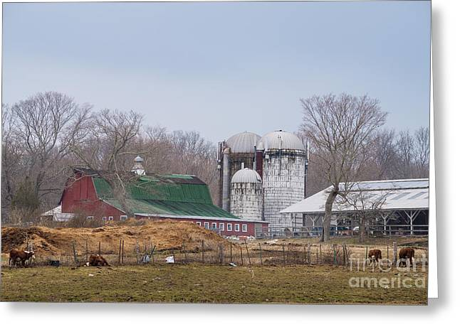 Pastureland Greeting Cards - Yankee Farmlands No 27 - Springtime in New England Greeting Card by JG Coleman