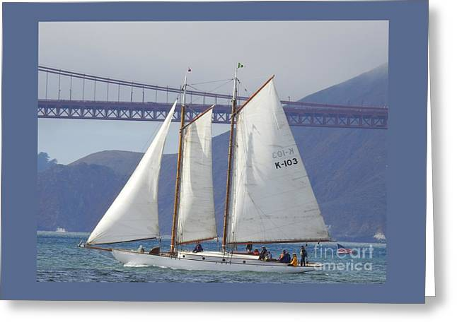 Best Sailing Photos Greeting Cards - Yankee Greeting Card by Scott Cameron