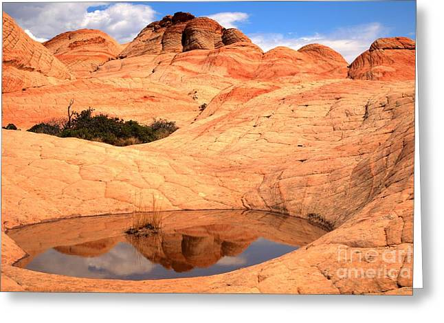 Southern Utah Greeting Cards - Yant Flat Pool Reflections Greeting Card by Adam Jewell