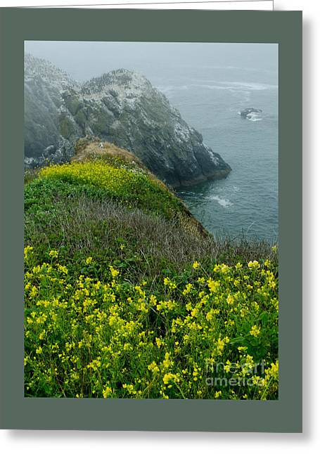 Ocean Photography Greeting Cards - Yaquina Head Oustanding Natural Area Greeting Card by Nick  Boren