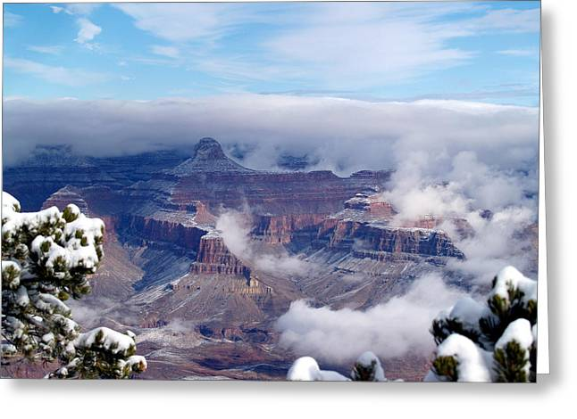 Yavapai Point Winter Greeting Card by Carrie Putz