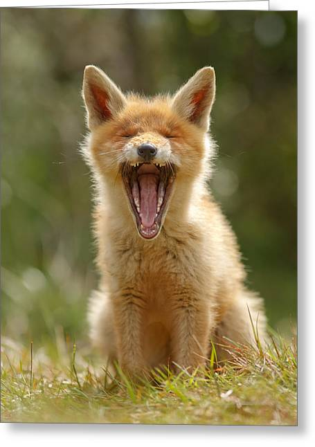 Suckling Greeting Cards - Yawning Fox Kit Greeting Card by Roeselien Raimond