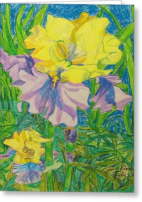 Seattle Pastels Greeting Cards - Yellow and Purple Iris Greeting Card by Joy Elizabeth Kim
