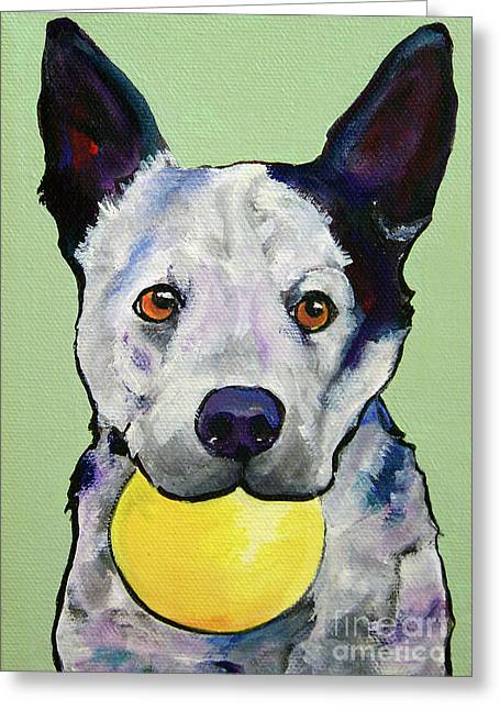 Australian Cattle Dog Greeting Cards - Yellow Ball Greeting Card by Pat Saunders-White