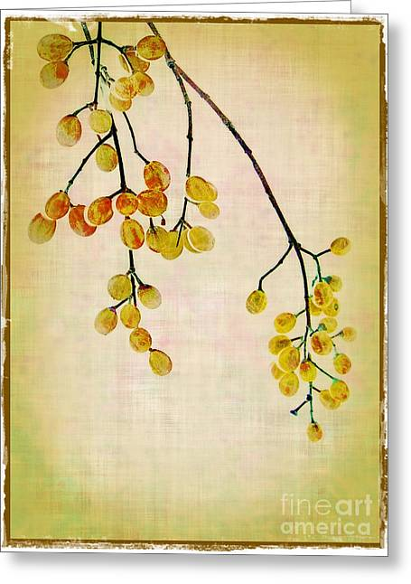 Judi Bagwell Greeting Cards - Yellow Berries Greeting Card by Judi Bagwell