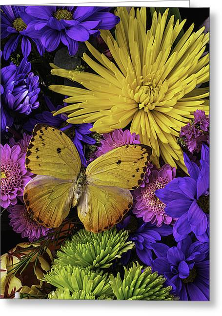 Gerbera Daisies Greeting Cards - Yellow Butterfly On Bouquet Greeting Card by Garry Gay