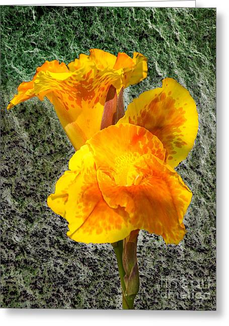 Texture Flower Tapestries - Textiles Greeting Cards - Yellow Cannon Greeting Card by James Hennis