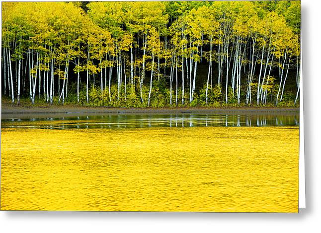 Evening Lights Greeting Cards - Yellow Greeting Card by Chad Dutson