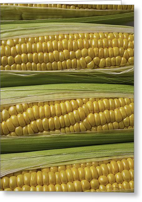 Husks Greeting Cards - Yellow Corn Greeting Card by Garry Gay