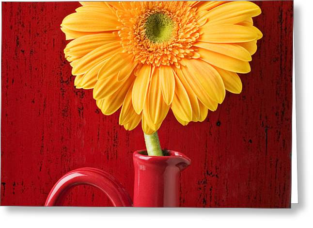 Yellow daisy in red vase Greeting Card by Garry Gay