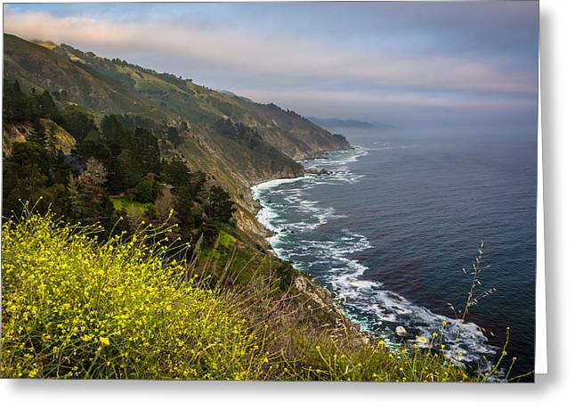 Big Sur Greeting Cards - Yellow flowers and view of the Pacific Coast in Big Sur California Greeting Card by Jon Bilous