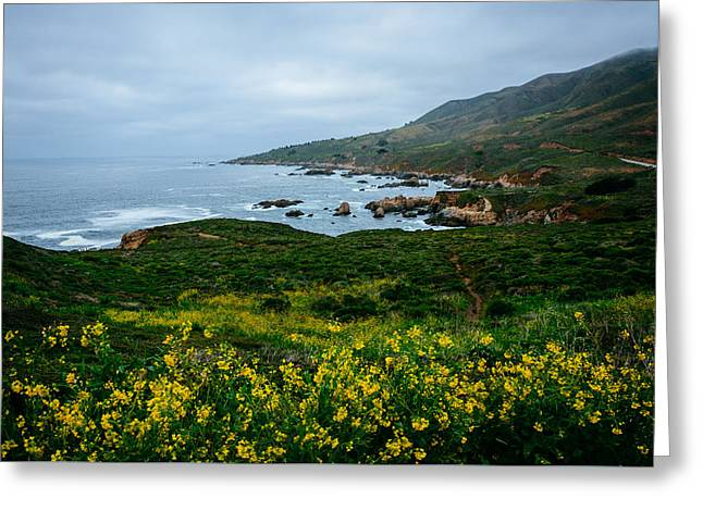 Big Sur Greeting Cards - Yellow flowers and view of the Pacific Ocean at Garrapata State Park California Greeting Card by Jon Bilous