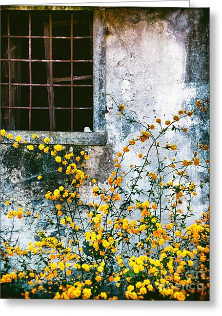 Grate Greeting Cards - Yellow Flowers And Window Greeting Card by Silvia Ganora