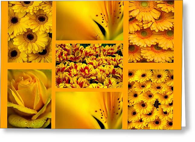Yellow Flowers Collection. Polyptych Greeting Card by Jenny Rainbow