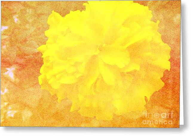 Subtle Colors Greeting Cards - Yellow Means Spring Greeting Card by Gena Weiser