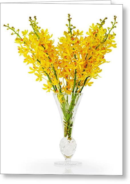 Softness Greeting Cards - Yellow Orchid In Crystal Vase Greeting Card by Atiketta Sangasaeng