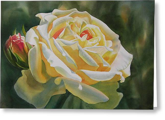 Yellow Rose With Bud Greeting Card by Sharon Freeman
