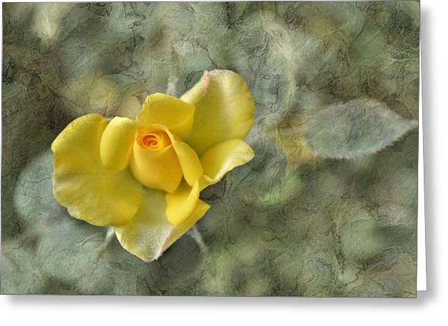Marbel Greeting Cards - Yellow Rose With Old Marbel Texture Background Greeting Card by Vesela Yokova