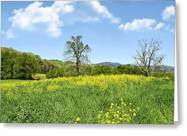 Yellow Spring Greeting Card by Susan Leggett
